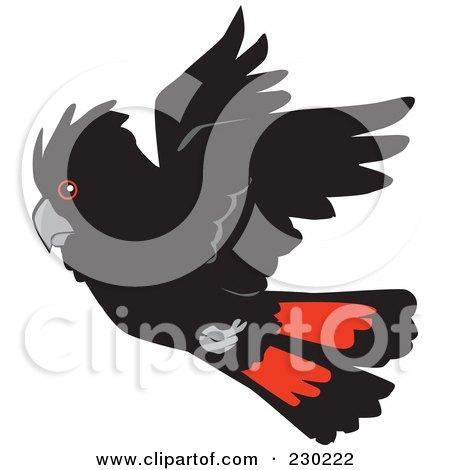 Royalty-Free (RF) Clipart Illustration of a Flying Red Tail Cockatoo Bird by Dennis Holmes Designs