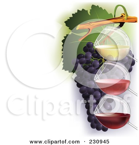 Royalty-Free (RF) Clipart Illustration of Three Glasses Of Wine Over Grapes, With Copy Space To The Left - 1 by Eugene