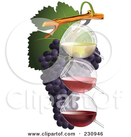 Royalty-Free (RF) Clipart Illustration of Three Glasses Of Wine With Grapes - 1 by Eugene