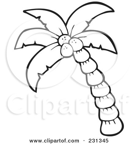 coloring page outline of a palm tree posters art prints