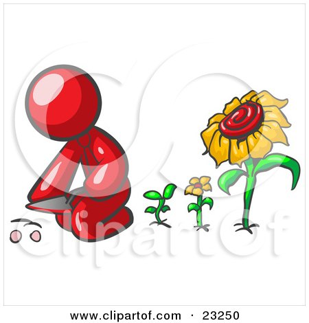 Clipart Illustration of a Red Man Kneeling By Growing Sunflowers To Plant Seeds In A Dirt Hole In A Garden by Leo Blanchette