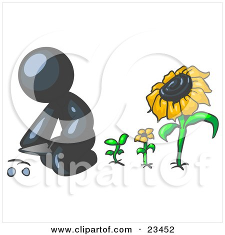Clipart Illustration of a Navy Blue Man Kneeling By Growing Sunflowers To Plant Seeds In A Dirt Hole In A Garden by Leo Blanchette