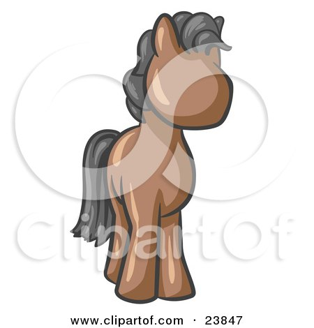 Cute Brown Pony Horse Looking Out At The Viewer Posters, Art Prints
