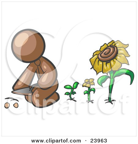 Clipart Illustration of a Brown Man Kneeling By Growing Sunflowers To Plant Seeds In A Dirt Hole In A Garden by Leo Blanchette