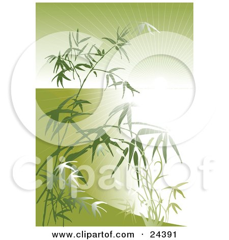 Clipart Illustration of a Bright Burst Of Light Beaming Through Bamboo Stalks And Leaves Over Green by Eugene