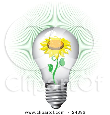 Blooming Yellow Sunflower Inside Of A Bright Clear Glass Lightbulb With A Green Burst Posters, Art Prints