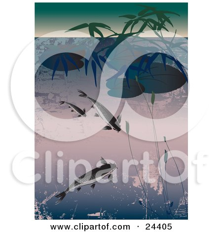 Clipart Illustration of Three Koi Fish Swimming In A Pond Under Lily Pads And Aquatic Plants, With Grunge Texture by Eugene