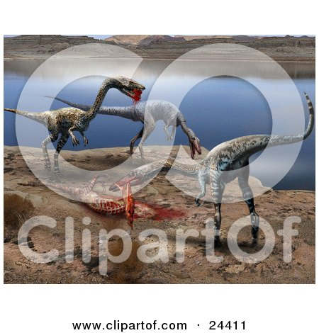 Herd Of Coelophysis Dinosaurs Dining On A Bloody Kill On The Shore Of A Lake Posters, Art Prints