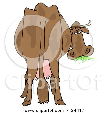 Clipart Illustration of a Brown Dairy Cow With Udders, Looking Back At The Viewer And Grazing On Grass by djart