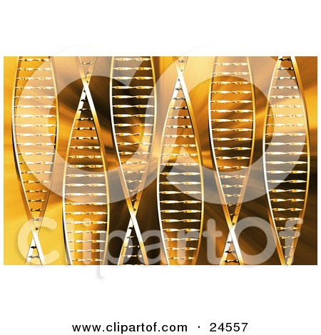 Clipart Illustration of 6 Strands Of DNA Double Helixes Twisting Over An Orange Background by KJ Pargeter