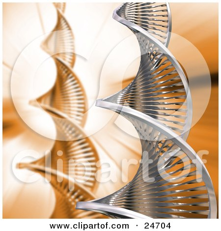 Clipart Illustration of a Chrome Double Helix DNA Strand Over An Orange Background With Another Strand by KJ Pargeter