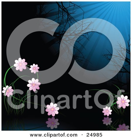 Clipart Illustration of a Garden Of Pink Flowers In The Moonlight, Over A Reflective Still Pond With Bare Trees In The Background At Night by elaineitalia