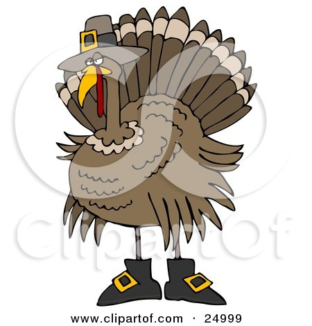 Clipart Illustration of a Silly Thanksgiving Turkey Bird In Pilgrim Boots And A Hat, Hiding From Hunters by djart