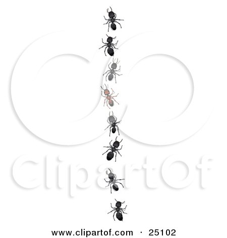 Clipart Illustration of a Unique Brown Ant Standing Out From A Line Of Black Worker Ants by Leo Blanchette