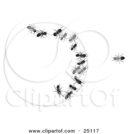 Clipart Illustration of a Lone Black Worker Ant Looking At His Team Trapped In A Bait Circle by Leo Blanchette