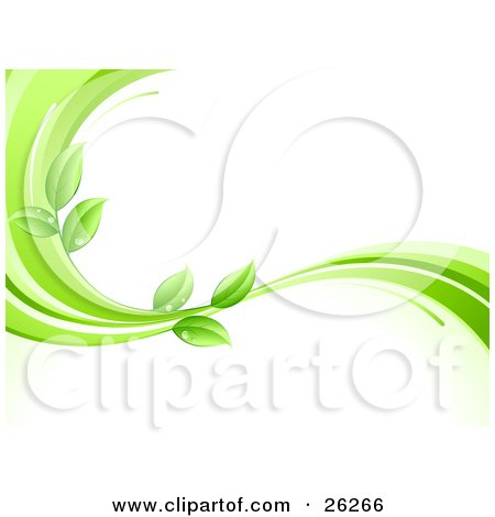 Clipart Illustration of an Organic Background Of Green Leaves Wet With Dew Drops On A Green And White Wave, Over White by beboy
