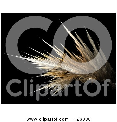 Clipart Illustration of a Yellow And White Fractal Resembling Strands Of Hair, Over A Black Background by KJ Pargeter