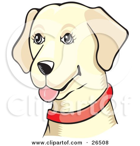 Clipart Illustration of a Friendly Yellow Labrador Dog Wearing A Red Collar by David Rey