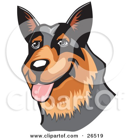 Clipart Illustration of a Friendly Brown And Black Australian Cattle Dog Hanging Its Tongue Out by David Rey