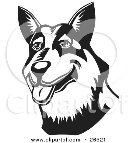 Clipart Illustration of a Friendly Australian Cattle Dog Hanging Its Tongue Out, Black And White by David Rey