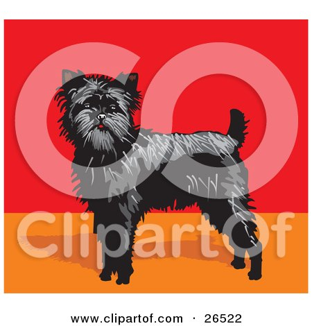 Clipart Illustration of an Alert Black Affenpinscher Dog In A Red And Orange Room by David Rey