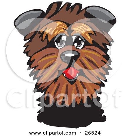 Clipart Illustration of a Friendly Brown Affenpinscher Dog by David Rey