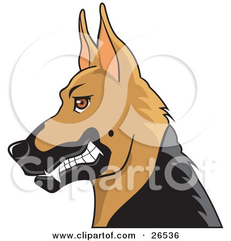 Clipart Illustration of a Growling German Shepherd Guard Dog With Cropped Ears In Profile by David Rey