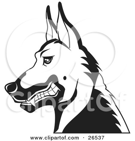 Clipart Illustration of a German Shepherd Guard Dog Growling In Profile, Black And White by David Rey