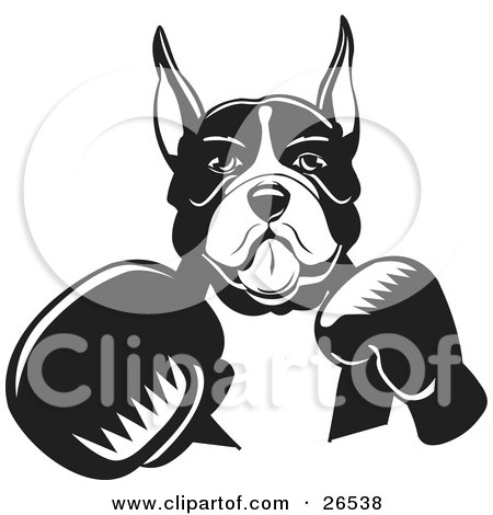 Clipart Illustration of a Boxer Dog With Cropped Ears, Fighting With Boxing Gloves, Black And White by David Rey