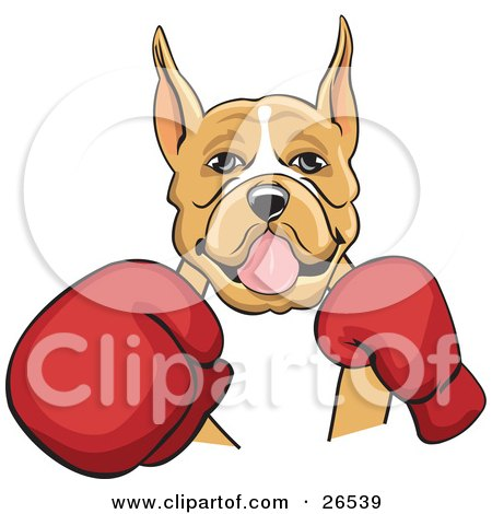 Clipart Illustration of a Tan And White Boxer Dog With Cropped Ears, Fighting With Red Boxing Gloves by David Rey