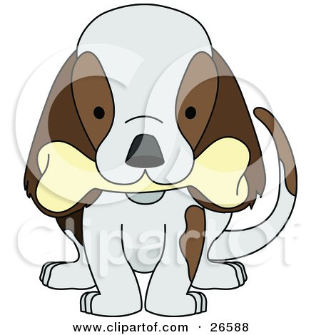 Clipart Illustration of a Cute Brown And White Puppy Dog Wagging Its Tail And Chewing On A Bone by AtStockIllustration