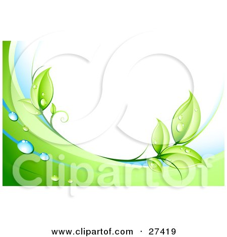 Clipart Illustration of Green Leaves, Dew And Green And White Waves Bordering A White Background by beboy