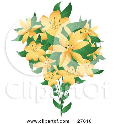 Clipart Illustration of a Bouquet Of Pretty Pale Orange Lily Flowers With Green Leaves, On A White Background by KJ Pargeter