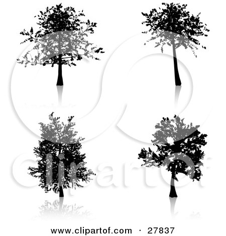 Clipart Illustration of a Set Of Four Silhouetted Trees, Some With More Branches And Foliage Than Others by KJ Pargeter