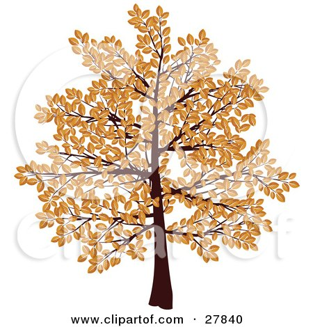 Clipart Illustration of a Tree With Branches Covered In Brown Autumn Leaves, Over A White Background by KJ Pargeter