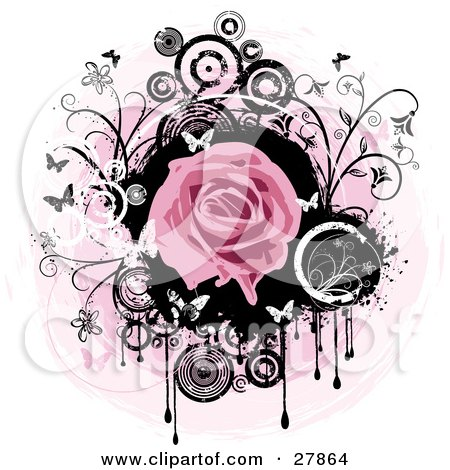 Blooming Pink Rose Over A Black Circle With Dripping Paint, Black And White Flowers, Circles And Butterflies Over A Pink And White Background Posters, Art Prints