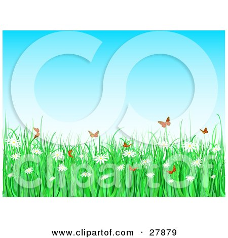 Clipart Illustration of Orange Butterflies Fluttering Over Tall Green Grasses And White Daisy Flowers On A Spring Day by KJ Pargeter