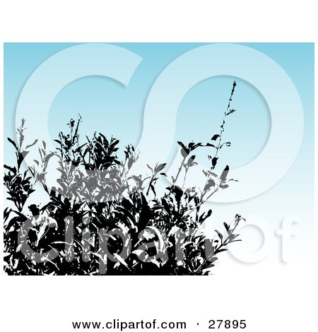 Clipart Illustration of a Silhouetted Bush Over A Gradient Blue Background by KJ Pargeter