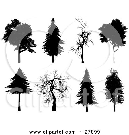 Clipart Illustration of a Set Of Eight Silhouetted Trees In Black And White by KJ Pargeter
