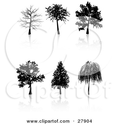 Clipart Illustration of a Set Of Six Black Silhouetted Trees Including A Weeping Willow by KJ Pargeter