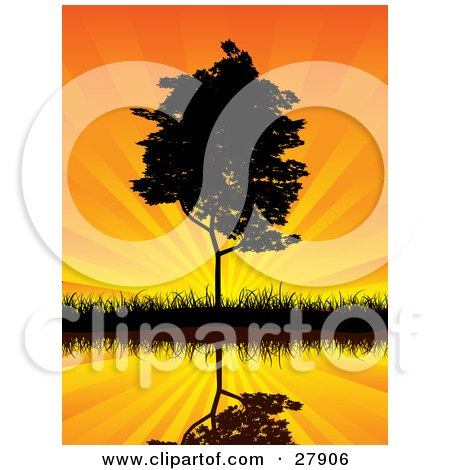 Clipart Illustration of a Tall Tree On A Shore, Reflecting On Still Waters Against An Orange Sunset Sky With Rays Of Light by KJ Pargeter