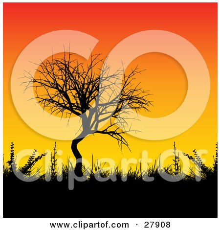 Clipart Illustration of a Leafless Tree, Grasses And Bushes Silhouetted Against A Gradient Orange And Yellow Sunset Background by KJ Pargeter