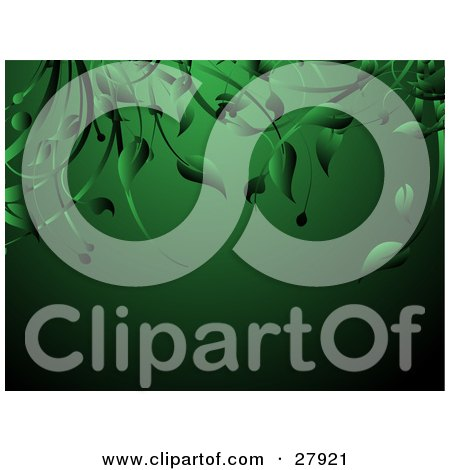 Clipart Illustration of Green Leaves And Vines Hanging Down Over A Green Background by KJ Pargeter