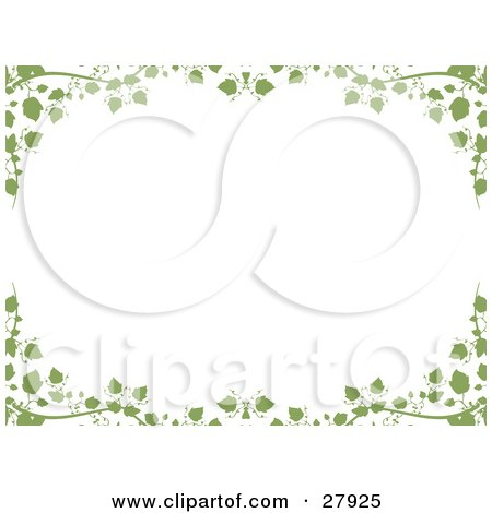 picture of a white background framed with green ivy vines and leaves.