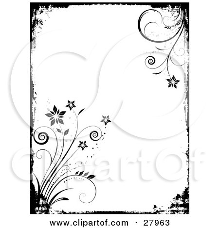 White Flower Picture on Of A Black And White Grunge Background With A Black Border And Flowers