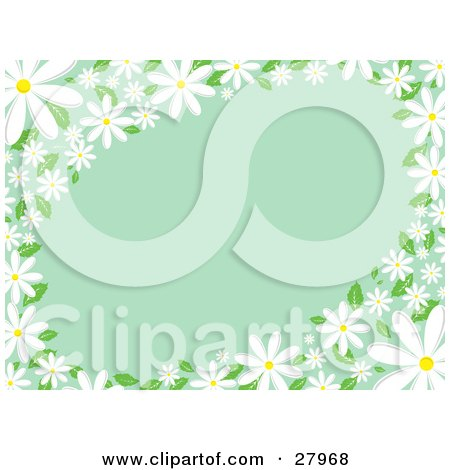 Clipart Illustration of White Daisy Flowers With Green Leaves, Bordering The Edges Of A Green Background by KJ Pargeter