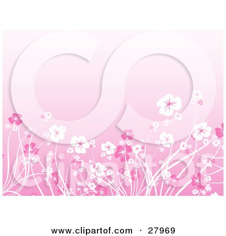 Clipart Illustration of a Garden Of Pink And White Flowers Over A Pink Background by KJ Pargeter