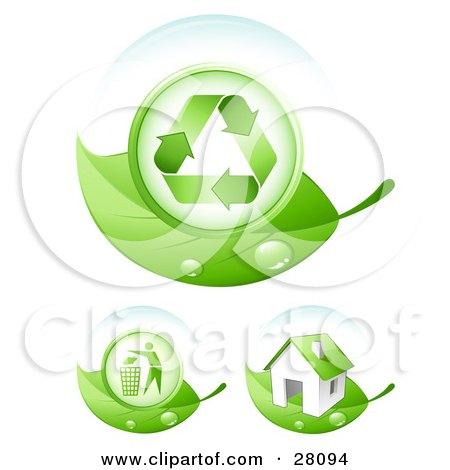Orange Circle With Green Leaf Logo