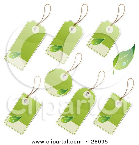 Clipart Illustration of a Set Of Rounded, Rectangle And Circular Blank Labels With Green And Tan Backgrounds And Leaf Icons, Great For Organic Products by beboy