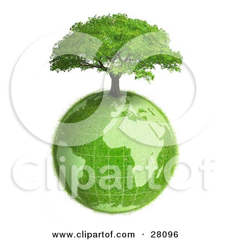 Clipart Illustration of a Lush Green Tree Growing On Top Of The Green Earth With A Grassy Texture, Over White by beboy